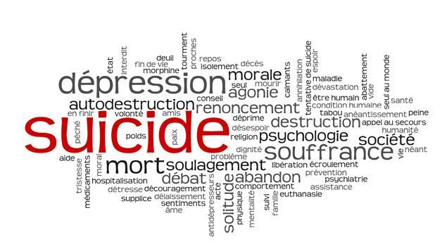 le suicide ou la tentative de suicide d un fonctionnaire sur son lieu de travail actualit s du. Black Bedroom Furniture Sets. Home Design Ideas